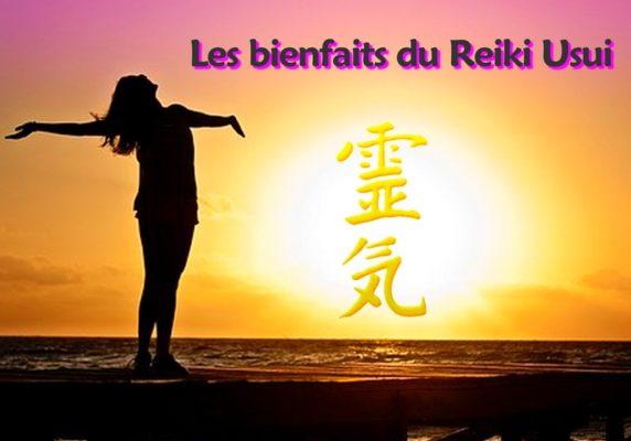 Les bienfaits du Reiki Usui et utilisations - Noellia Chami énergéticienne